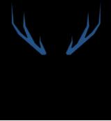 DIYA - Deer leather project made in IYA